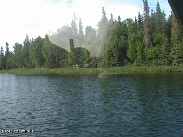 11 Lots Island Lake, Nikiski, AK 99635 Photo 12