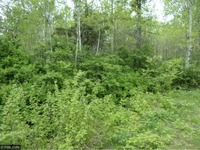 Home for sale: 0 Western Breeze Lot#4, Ojibwa, WI 54862