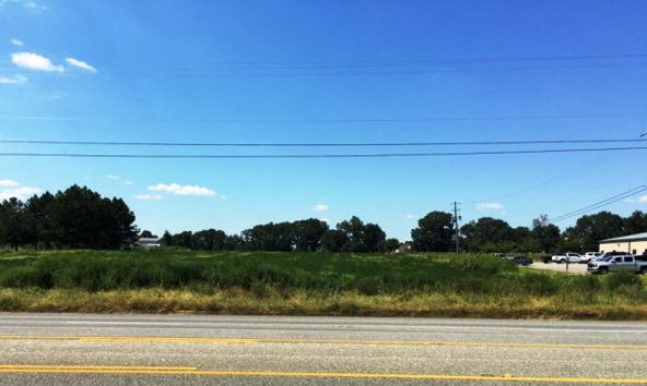 6.2 Acres Hartford Hwy., Dothan, AL 36305 Photo 13