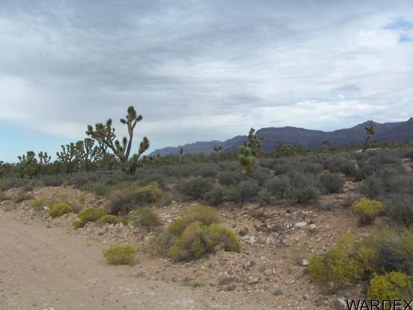 26712 N. Bullhead Rd., Meadview, AZ 86444 Photo 5