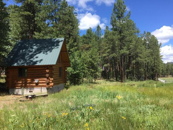 29 Cr 2266, Alpine, AZ 85920 Photo 6