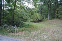 Home for sale: 720 Upper Buck Ridge Rd., Blain, PA 17006