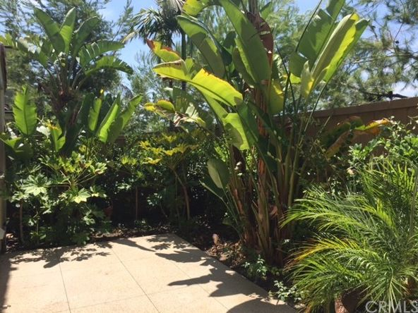 250 Desert Bloom, Irvine, CA 92618 Photo 24