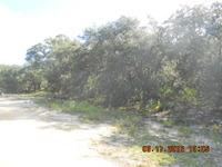 Home for sale: 2230 N. Barclay Rd., Avon Park, FL 33825