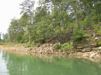 Home for sale: Lot 19 Tiffany Ln., Double Springs, AL 35553