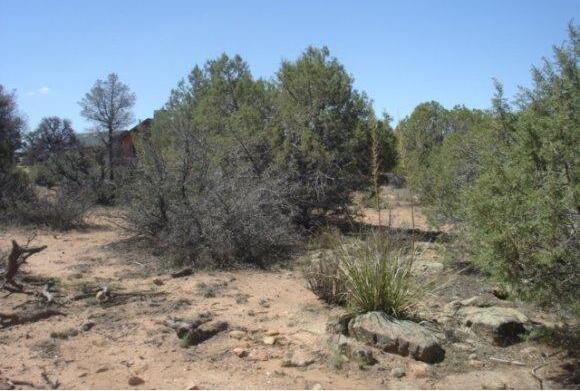 14480 N. Soza Mesa Ln., Prescott, AZ 86305 Photo 17