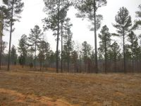 Home for sale: Lot # 9 Gilmer Rd., Pontotoc, MS 38863