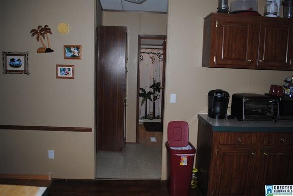 41 Norton Rd., Sylacauga, AL 35151 Photo 52