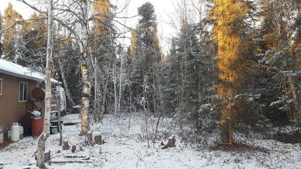 14613 E. Wilderness Rim, Willow, AK 99688 Photo 4