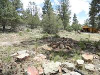 Home for sale: Lot 31 El Vado Cabin Sites, Tierra Amarilla, NM 87575