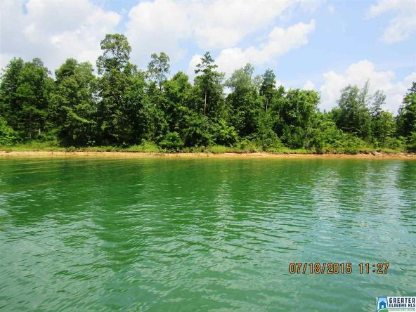 90 Stoney Point Landing, Double Springs, AL 35553 Photo 10