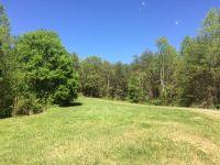 Home for sale: 363 Mcjunkin Rd., Tellico Plains, TN 37385