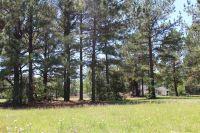 Home for sale: 0 Kayton Ct., Pembroke, GA 31321