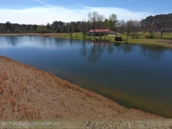 5125 Smith Lake Dam, Jasper, AL 35504 Photo 33