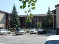 Home for sale: 214 S. Harris St. St., Breckenridge, CO 80424