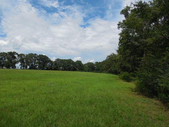 3 Acres Hwy. 103, Slocomb, AL 36375 Photo 1