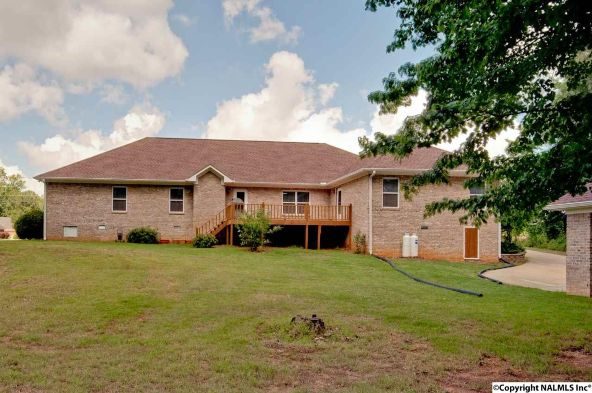 133 Turtle Bend Dr., Toney, AL 35773 Photo 41