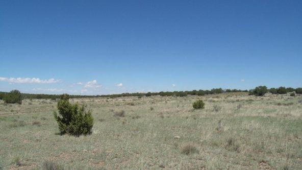 11116 S. State Route 64, Williams, AZ 86046 Photo 5