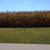 Home for sale: Lot 19 Riverview Dr., Milton, KY 40045