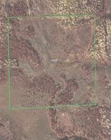 Home for sale: 39.15 Acres Off Perch Lake Ln., Pickerel, WI 54465