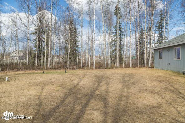 14490 W. Norcorss Cir., Big Lake, AK 99652 Photo 6