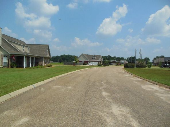 163 Rosa Ln., Midland City, AL 36350 Photo 5