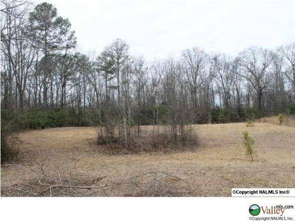 Lot 4 Cowford Rd., Athens, AL 35611 Photo 1