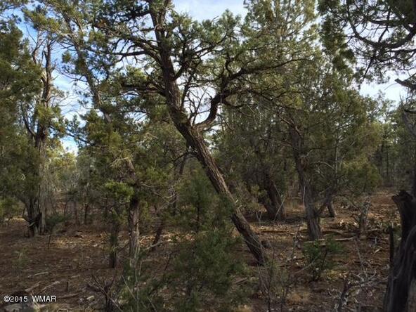 1300 W. Sierra Buena Ct., Show Low, AZ 85901 Photo 13