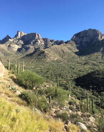 2500 Della Roccia Ct., Oro Valley, AZ 85737 Photo 18
