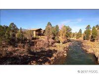 Home for sale: 28600 Cr 313, Buena Vista, CO 81211