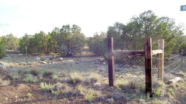12498 N. Chino Rd., Williams, AZ 86046 Photo 25