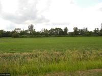 Home for sale: Oak Shores Rd., Hanska, MN 56041