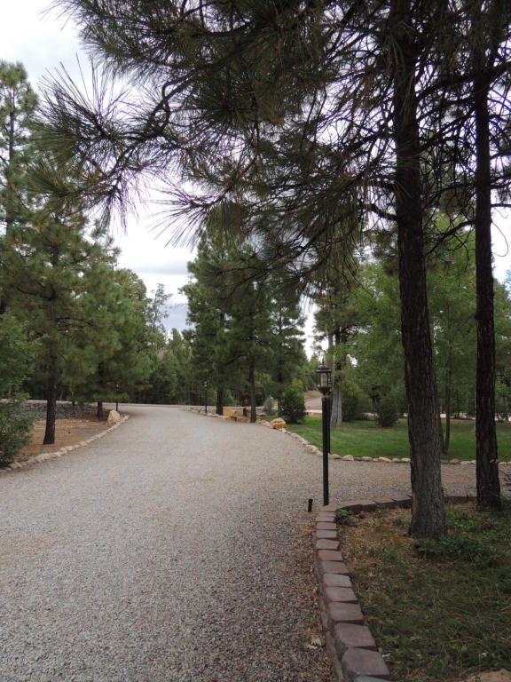 1911 S. Sierra Park Trail, Show Low, AZ 85901 Photo 48