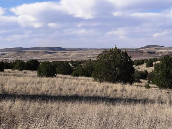 522 Sierra Verde Ranch, Seligman, AZ 86337 Photo 5