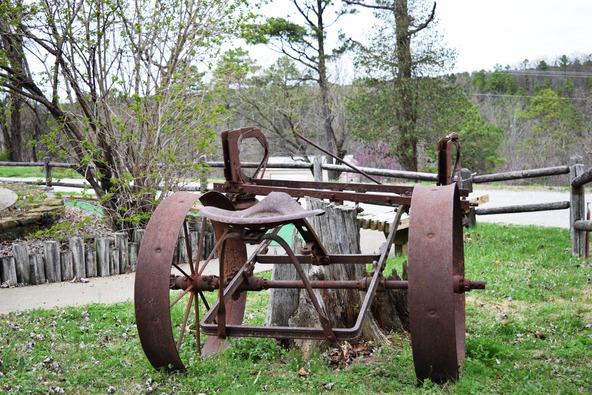 3173 E. Van Buren, Eureka Springs, AR 72632 Photo 41