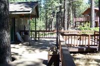 Home for sale: 165 Pinion Rd., Markleeville, CA 96120