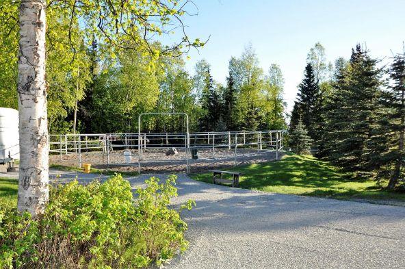 15811 Elizabeth St., Anchorage, AK 99516 Photo 7