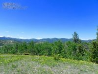 Home for sale: 0 Lake Gulch Rd., Central City, CO 80427