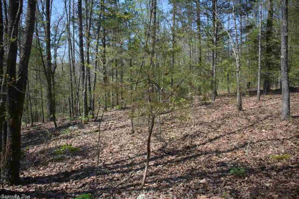 7 Ac Brownsville Rd., Greers Ferry, AR 72067 Photo 2