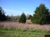 Home for sale: Lot 24 Falltime, Bull Shoals, AR 72619