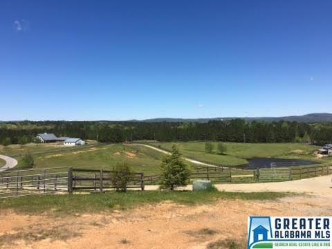 169 Shire Valley Rd., Chelsea, AL 35051 Photo 16