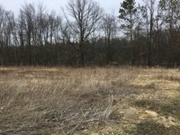 Home for sale: Lot 3 Weston Falls Avenue, Neillsville, WI 54456