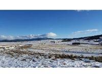 Home for sale: 603 Slalmon Ln., Butte, MT 59701