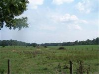 Home for sale: Hunt, Farmington, MO 63640