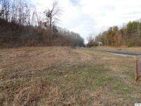 Home for sale: 12805 Chapman, Seymour, TN 37865
