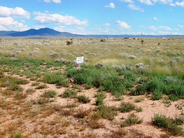 L267 Possum Trail, Carrizozo, NM 88301 Photo 8