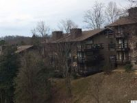 Home for sale: 1081 Cove Rd., Unit 822, Sevierville, TN 37876