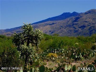 4240 S. Escalante Ridge, Tucson, AZ 85730 Photo 2