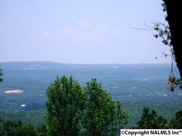 20228 County Rd. 89, Mentone, AL 35984 Photo 1