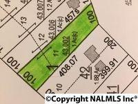 Home for sale: 0 County Rd. 89, Mentone, AL 35984